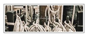 2011---04---10---JVE---40D---IMG_1533-2--Grand-