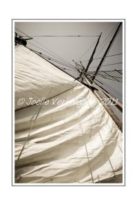 2011---04---10---JVE---40D---IMG_1611--Grand-