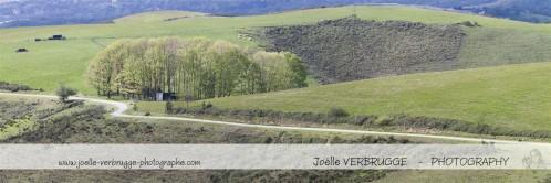 JVE---Collines-Ascain---052--Medium-