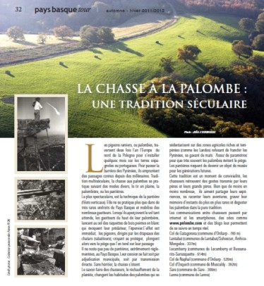 chasse-palombe