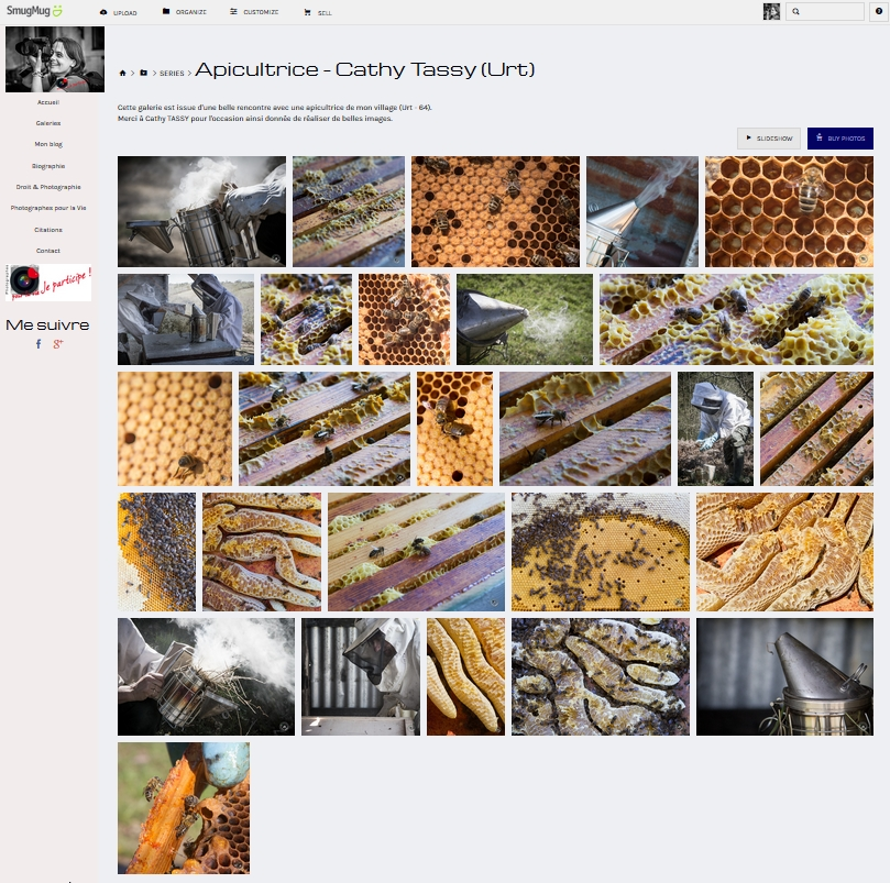 abeilles-full